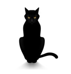 Madrileño gato